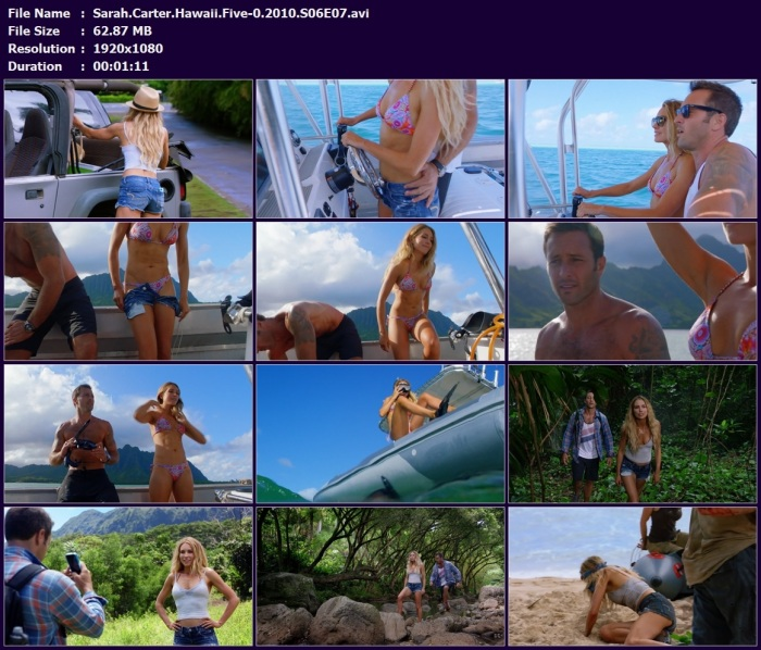 Sarah.Carter.Hawaii.Five-0.2010.S06E07.avi